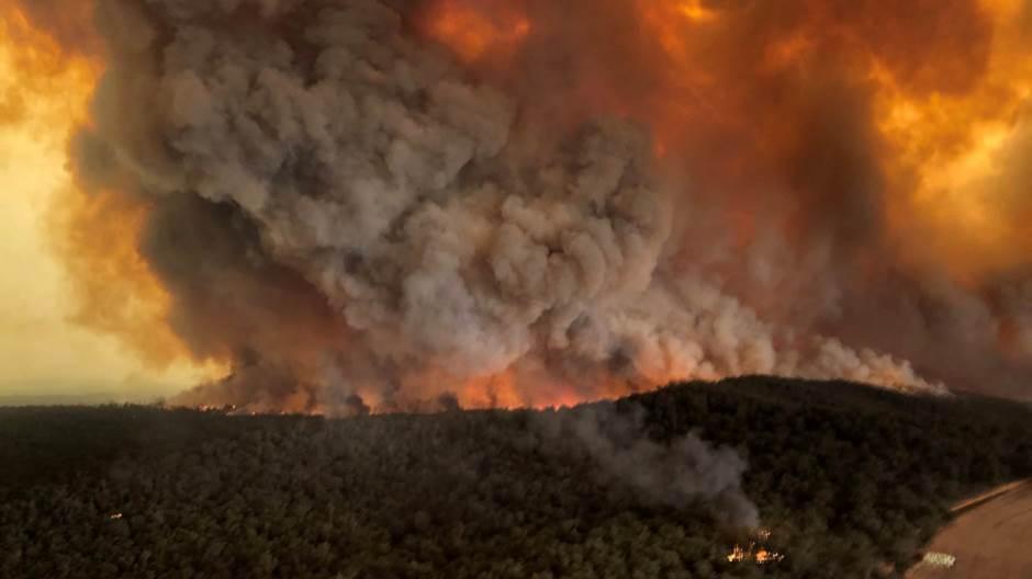 Светска метеоролошка организација: Дим од пожара у Аустралији стигао до Јужне Америке, а могао би се проширити и на Арктик