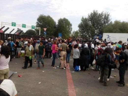 Реадмисија миграната из ЕУ у Србију 8
