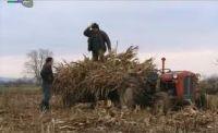 Пољопривреда и село - право на наду Србије